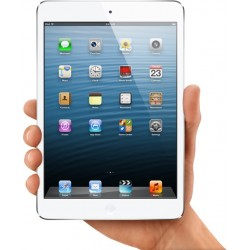 Remplacement de dalle LCD Apple iPad Mini
